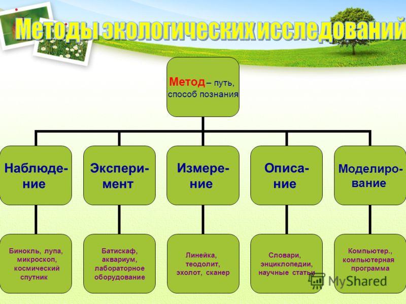 Сообщества Живых Организмов Презентация