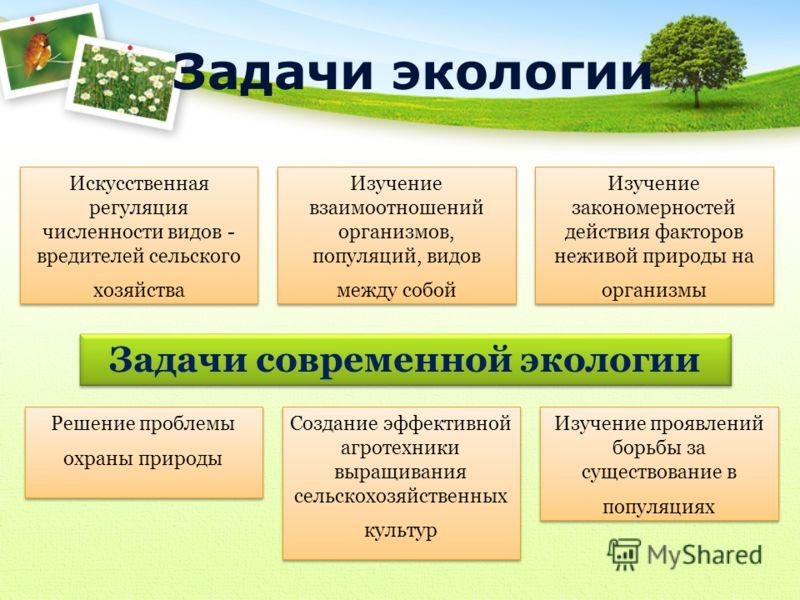 предмет изучения задачи и методы экологии