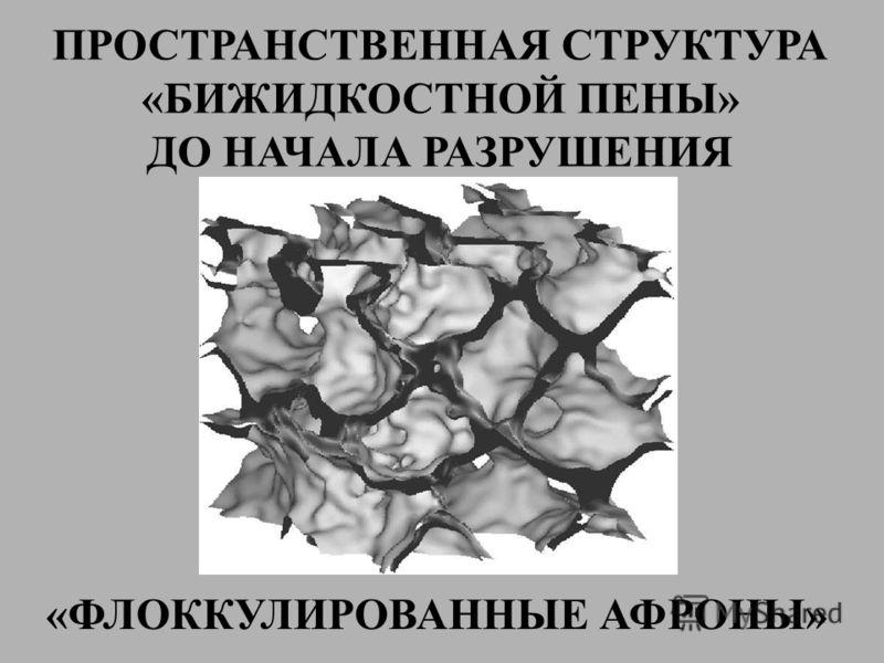ПРОСТРАНСТВЕННАЯ СТРУКТУРА «БИЖИДКОСТНОЙ ПЕНЫ» ДО НАЧАЛА РАЗРУШЕНИЯ «ФЛОККУЛИРОВАННЫЕ АФРОНЫ»