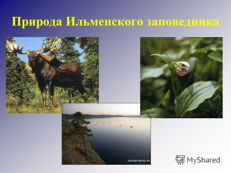 Природа Ильменского заповедника