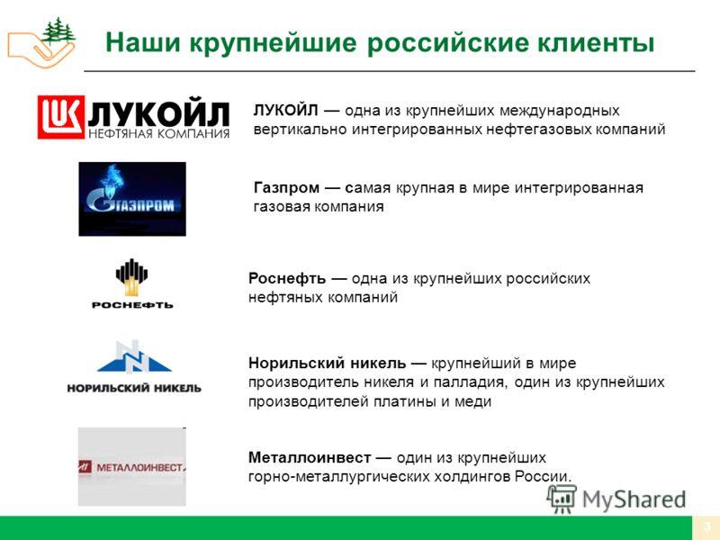 Наши крупнейшие российские клиенты Газпром самая крупная в мире интегрированная газовая компания ЛУКОЙЛ одна из крупнейших международных вертикально интегрированных нефтегазовых компаний Роснефть одна из крупнейших российских нефтяных компаний Нориль