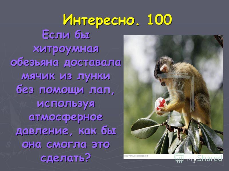 Интересно. 100 Если бы хитроумная обезьяна доставала мячик из лунки без помощи лап, используя атмосферное давление, как бы она смогла это сделать? Если бы хитроумная обезьяна доставала мячик из лунки без помощи лап, используя атмосферное давление, ка