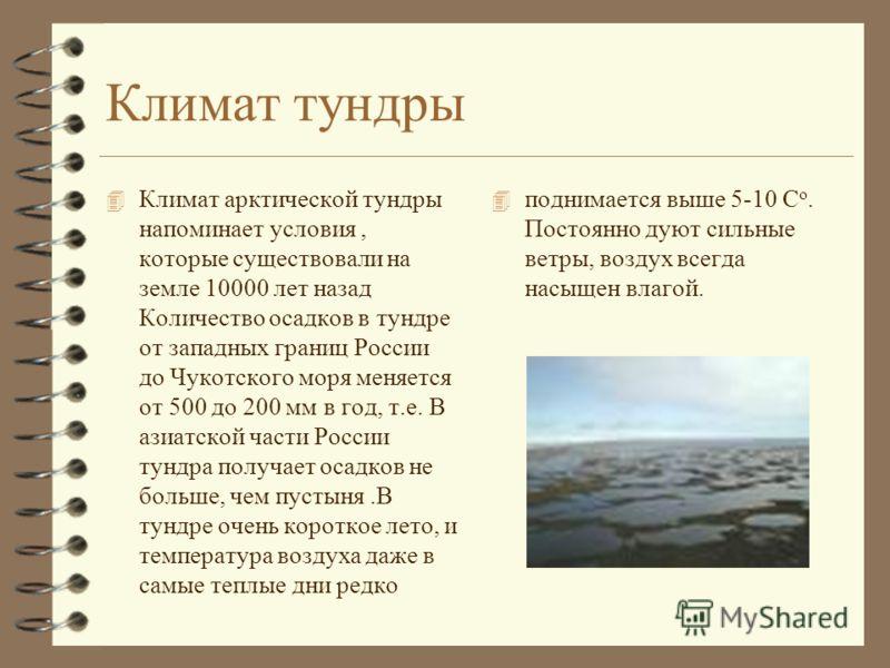 Климат тундры 4 Климат арктической тундры напоминает условия, которые существовали на земле 10000 лет назад Количество осадков в тундре от западных границ России до Чукотского моря меняется от 500 до 200 мм в год, т.е. В азиатской части России тундра