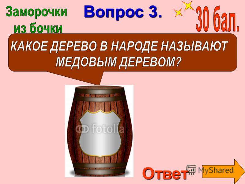 Вопрос 3. Ответ