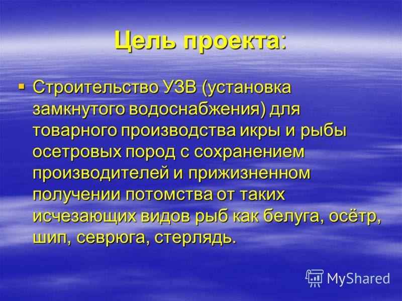 Название: Название: Инвестиционный проект ТОО «РыбБиоФерм Каспий» Инвестиционный проект ТОО «РыбБиоФерм Каспий» «Создание автоматизированного рыбоводного комплекса по товарному осетроводству производительностью 100 тонн товарной рыбы и 3 тонны пищево