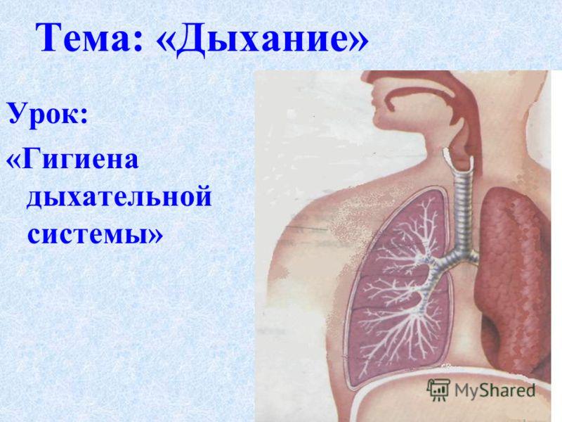Урок: «Гигиена дыхательной системы» Тема: «Дыхание»