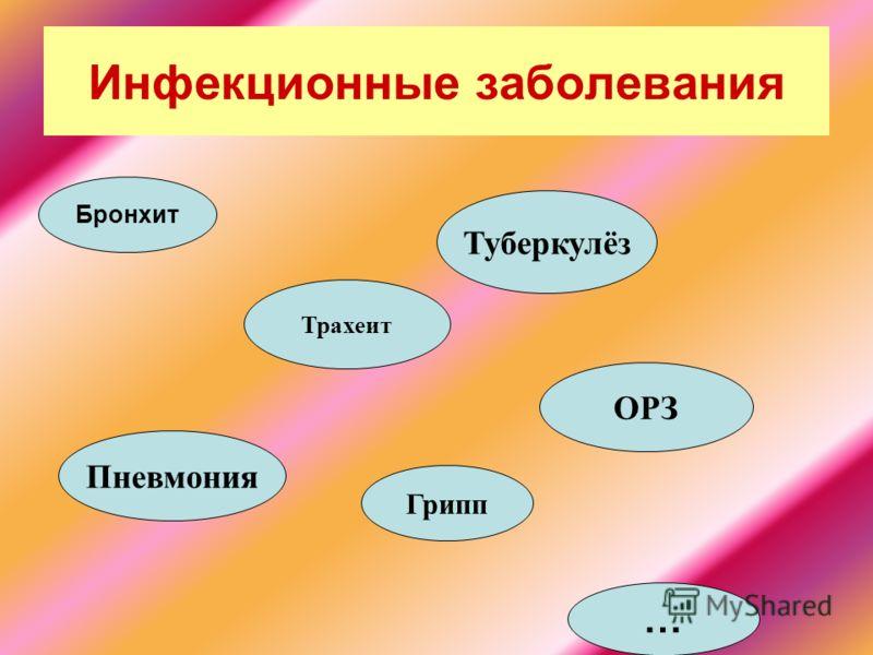 Инфекционные заболевания Бронхит Трахеит Пневмония Грипп Туберкулёз ОРЗ …