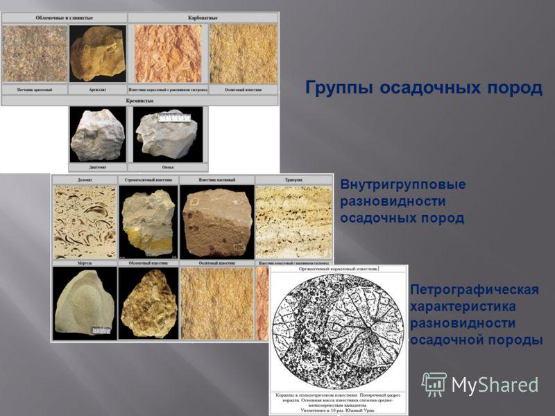 Группы осадочных пород Внутригрупповые разновидности осадочных пород Петрографическая характеристика разновидности осадочной породы