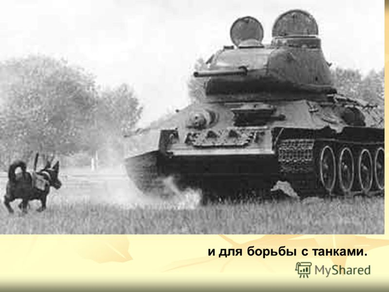и для борьбы с танками.