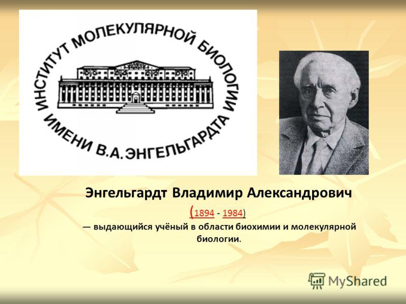 Энгельгардт Владимир Александрович ( 1894( 1894 - 1984) 1984 выдающийся учёный в области биохимии и молекулярной биологии.