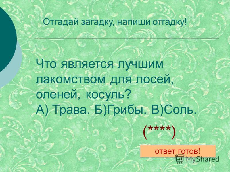 Что является лучшим лакомством для лосей, оленей, косуль? А) Трава. Б)Грибы. В)Соль. Отгадай загадку, напиши отгадку!