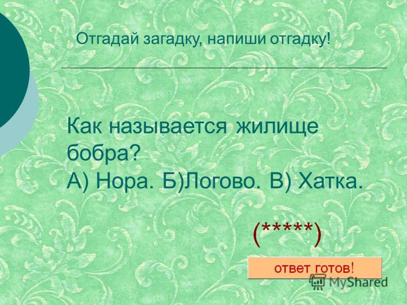 Как называется жилище бобра? А) Нора. Б)Логово. В) Хатка. Отгадай загадку, напиши отгадку!