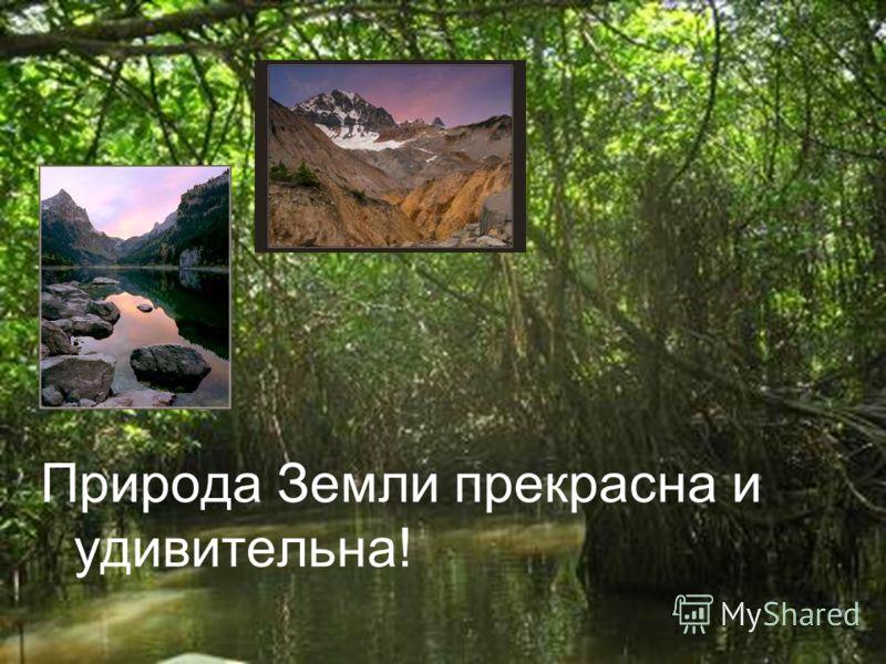 Природа Земли прекрасна и удивительна!