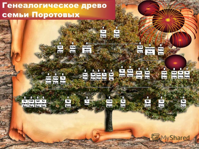 Генеалогическое древо семьи Поротовых