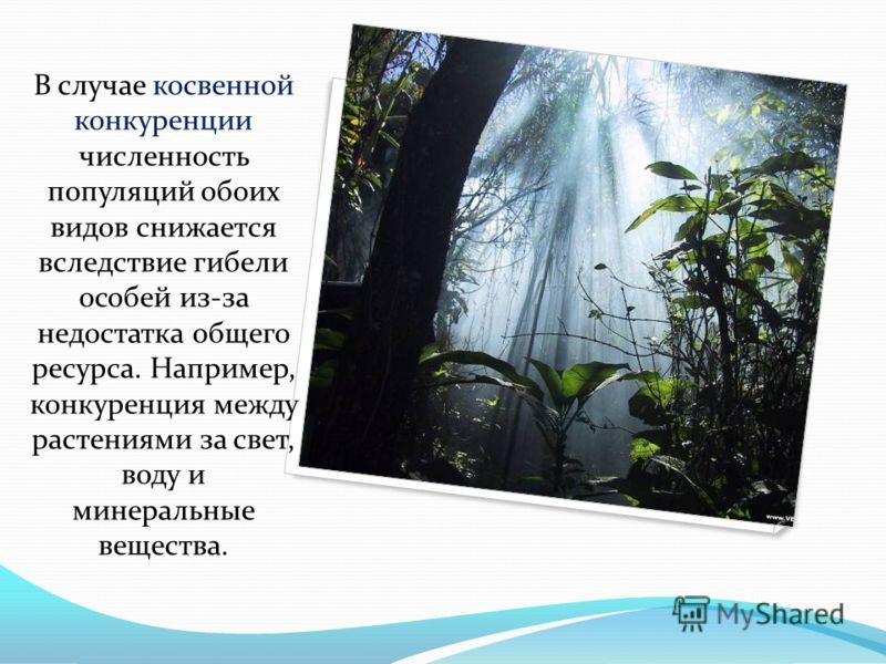 В случае косвенной конкуренции численность популяций обоих видов снижается вследствие гибели особей из-за недостатка общего ресурса. Например, конкуренция между растениями за свет, воду и минеральные вещества.