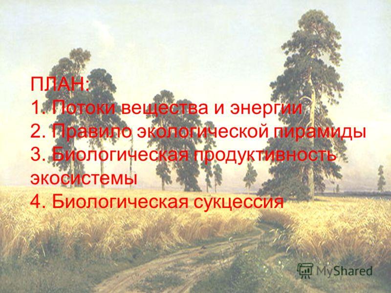 ПЛАН: 1. Потоки вещества и энергии 2. Правило экологической пирамиды 3. Биологическая продуктивность экосистемы 4. Биологическая сукцессия