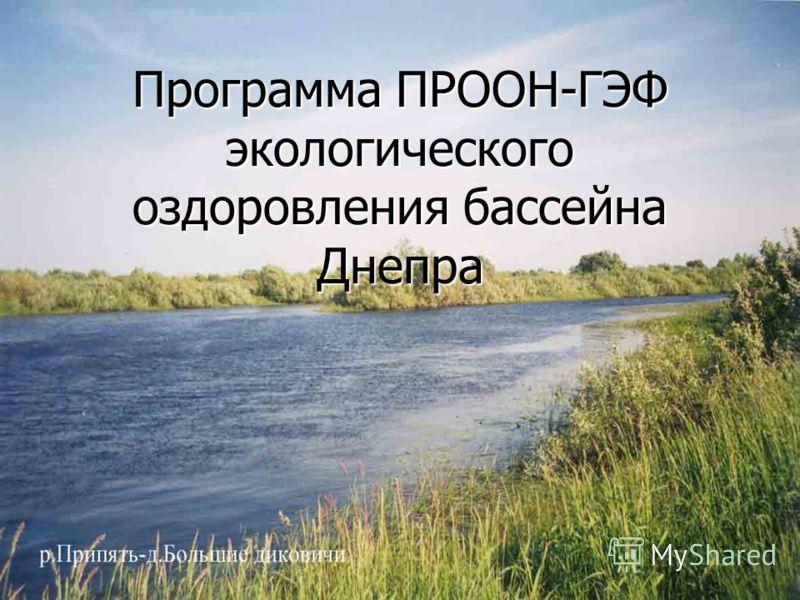 Программа ПРООН-ГЭФ экологического оздоровления бассейна Днепра