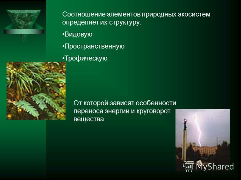 Соотношение элементов природных экосистем определяет их структуру: Видовую Пространственную Трофическую От которой зависят особенности переноса энергии и круговорот вещества