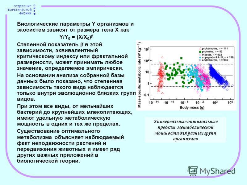 ОТДЕЛЕНИЕ ТЕОРЕТИЧЕСКОЙ ФИЗИКИ ПИЯФПИЯФ Биологические параметры Y организмов и экосистем зависят от размера тела X как Y/Y 0 = (X/X 0 ) Степенной показатель в этой зависимости, эквивалентный критическому индексу или фрактальной размерности, может при
