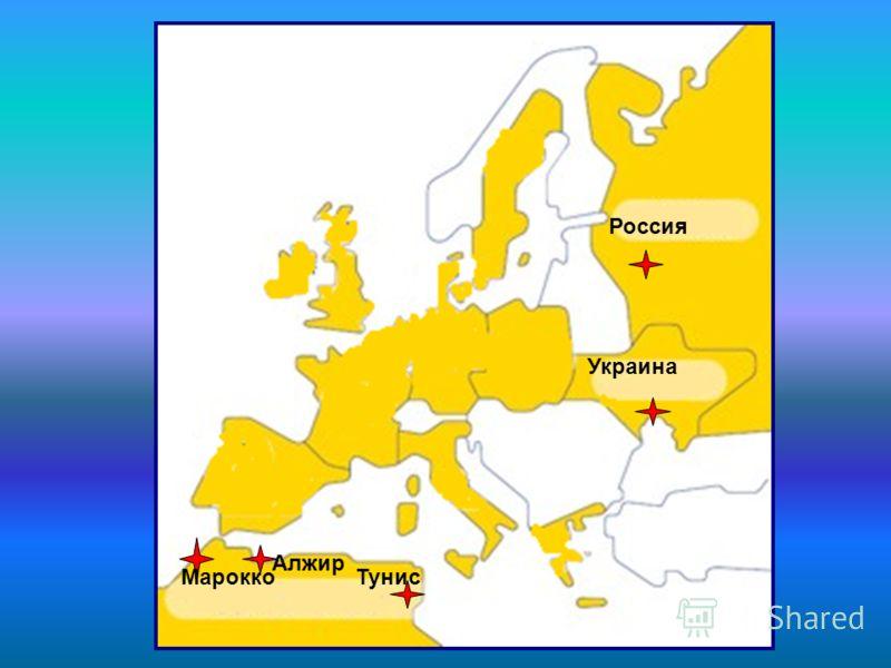 Украина Россия Алжир Марокко Тунис