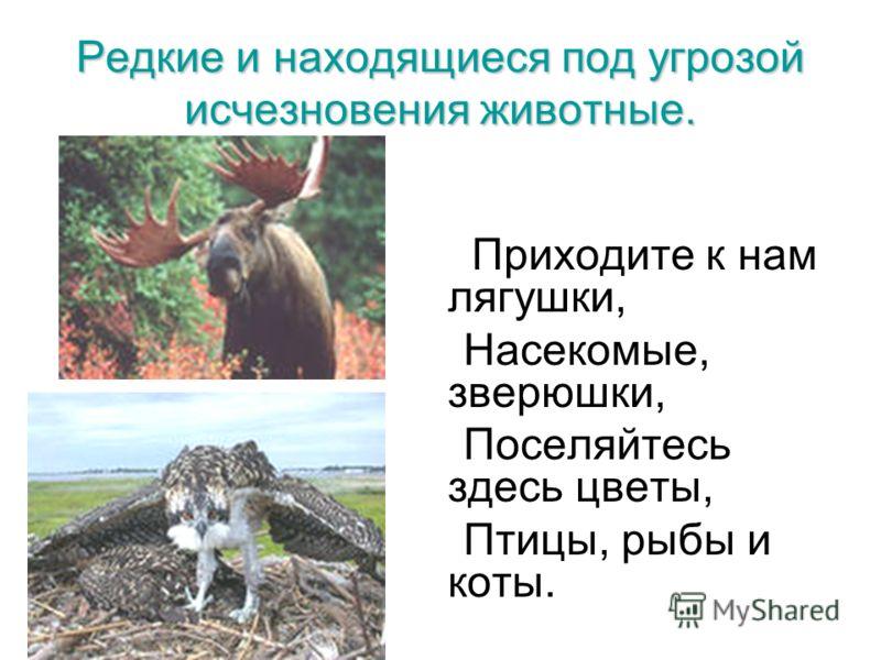 Редкие и находящиеся под угрозой исчезновения животные. Приходите к нам лягушки, Насекомые, зверюшки, Поселяйтесь здесь цветы, Птицы, рыбы и коты. «Берегите природу»