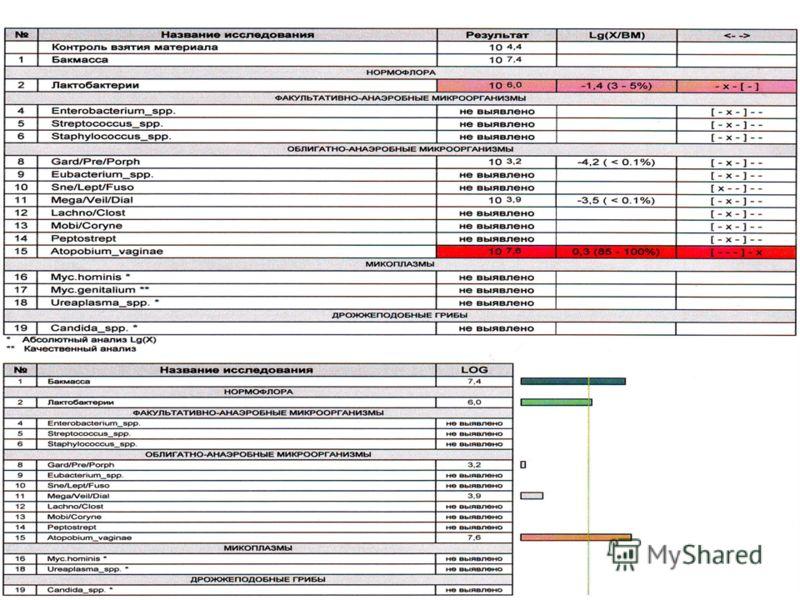 ПЦР - это ДНК-Технология401 июля 2013 г.