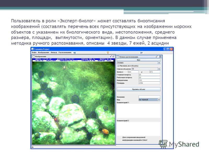 Пользователь в роли «Эксперт-биолог» может составлять биоописания изображений (составлять перечень всех присутствующих на изображении морских объектов с указанием их биологического вида, местоположения, среднего размера, площади, вытянутости, ориента