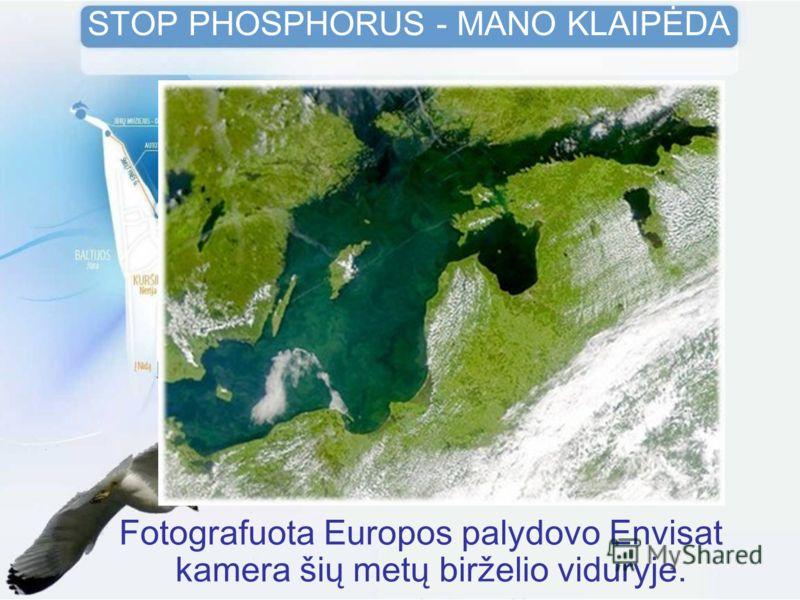 Fotografuota Europos palydovo Envisat kamera šių metų birželio viduryje. STOP PHOSPHORUS - MANO KLAIPĖDA