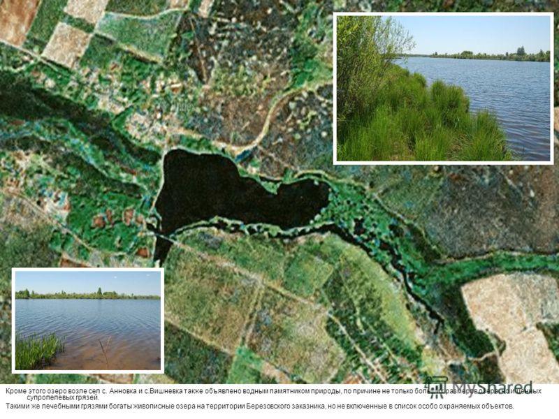 Кроме этого озеро возле сел с. Анновка и с.Вишневка также объявлено водным памятником природы, по причине не только больших размеров озера, но и ценных супропелевых грязей. Такими же лечебными грязями богаты живописные озера на территории Березовског