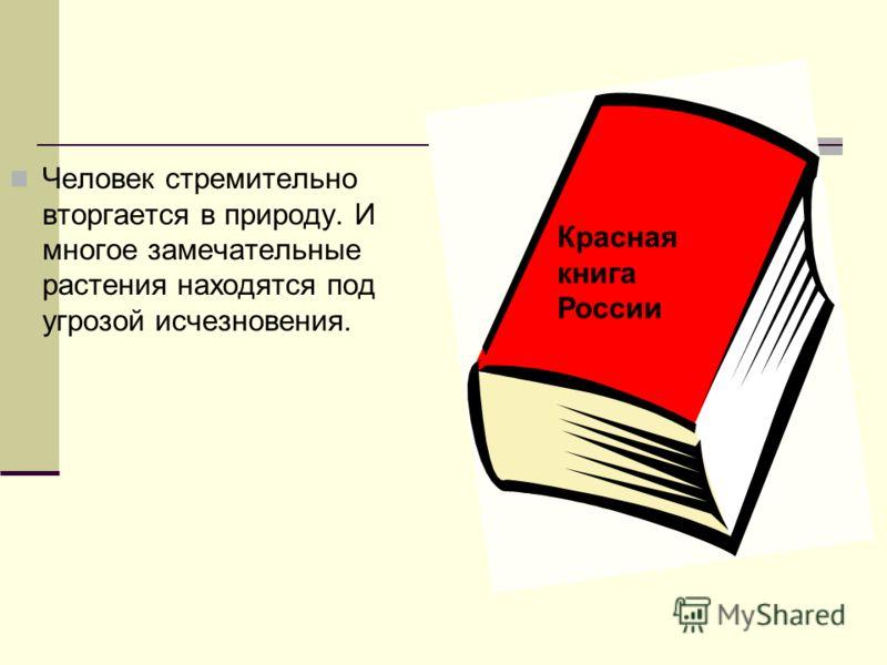 Человек стремительно вторгается в природу. И многое замечательные растения находятся под угрозой исчезновения. Красная книга России