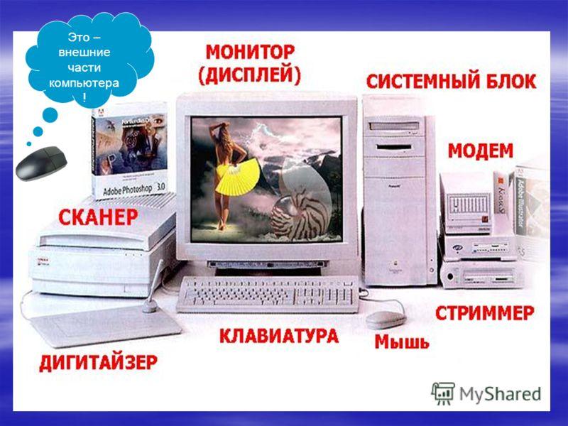 Это – внешние части компьютера !