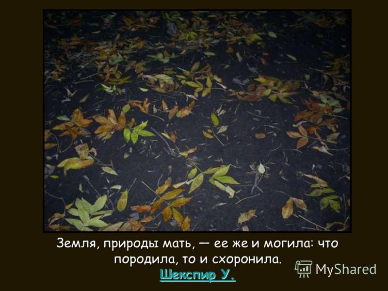 Земля, природы мать, ее же и могила: что породила, то и схоронила. Шекспир У. Шекспир У. Шекспир У.