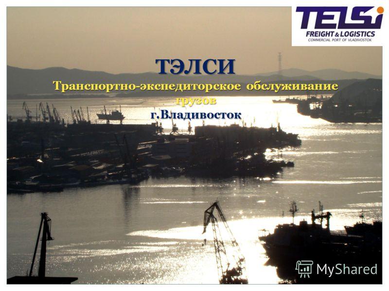 ТЭЛСИ Транспортно-экспедиторское обслуживание грузов г.Владивосток