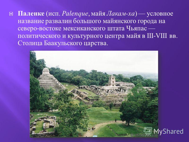 Паленке ( исп. Palenque, майя Лакам - ха ) условное название развалин большого майянского города на северо - востоке мексиканского штата Чьяпас политического и культурного центра майя в III-VIII вв. Столица Баакульского царства.