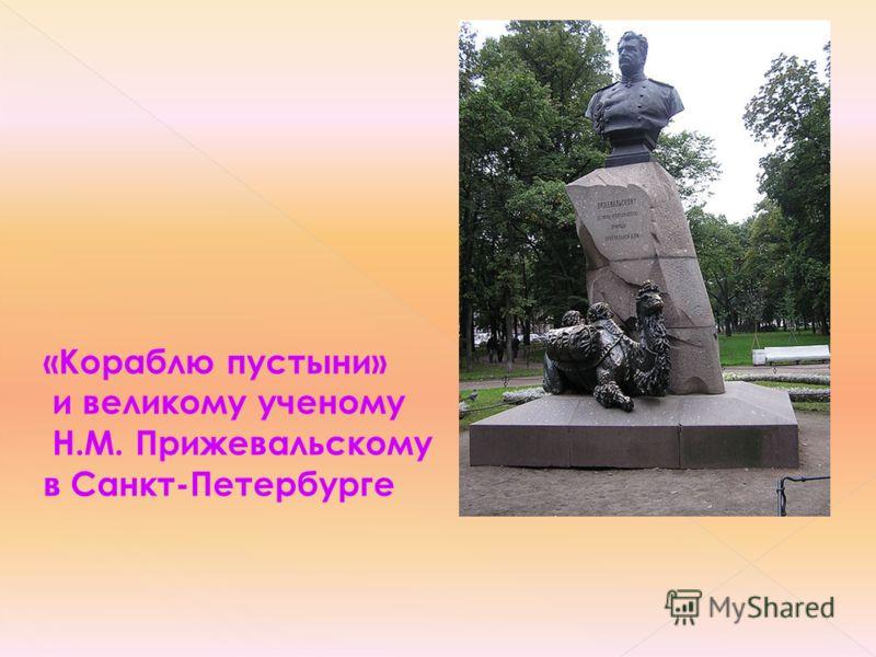 «Кораблю пустыни» и великому ученому Н.М. Прижевальскому в Санкт-Петербурге