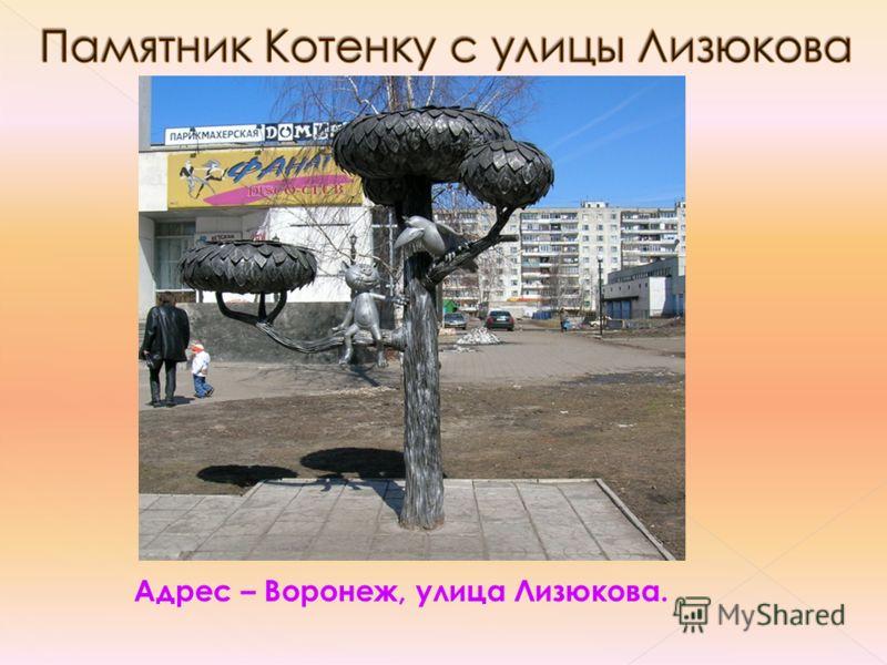 Адрес – Воронеж, улица Лизюкова.