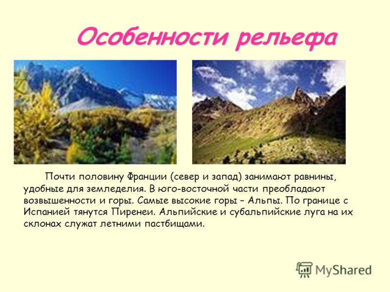 Особенности рельефа Почти половину Франции (север и запад) занимают равнины, удобные для земледелия. В юго-восточной части преобладают возвышенности и горы. Самые высокие горы – Альпы. По границе с Испанией тянутся Пиренеи. Альпийские и субальпийские