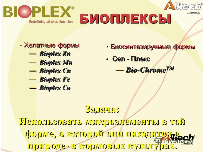 БИОПЛЕКСЫ Хелатные формы Bioplex Zn Bioplex Mn Bioplex Cu Bioplex Fe Bioplex Co Хелатные формы Bioplex Zn Bioplex Mn Bioplex Cu Bioplex Fe Bioplex Co Биосинтезируемые формы Сел - Плекс Bio-Chrome TM Биосинтезируемые формы Сел - Плекс Bio-Chrome TM За