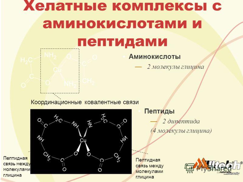 Хелатные комплексы с аминокислотами и пептидами Аминокислоты 2 молекулы глицина Пептиды 2 дипептида (4 молекулы глицина) Координационные ковалентные связи Пептидная связь между молекулами глицина