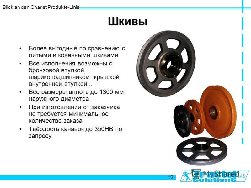 Blick an den Charlet Produkte-Linie 12 Шкивы Более выгодные по сравнению с литыми и кованными шкивами Все исполнения возможны с бронзовой втулкой, шарикоподшипником, крышкой, внутренней втулкой... Все размеры вплоть до 1300 мм наружного диаметра При