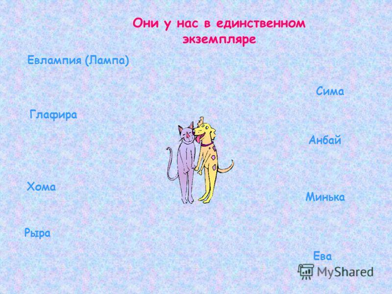 Они у нас в единственном экземпляре Евлампия (Лампа) Сима Глафира Анбай Хома Минька Рыра Ева