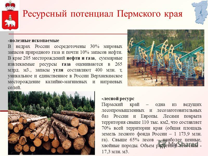 Ресурсный потенциал Пермского края -полезные ископаемые В недрах России сосредоточены 30% мировых запасов природного газа и почти 10% запасов нефти. В крае 205 месторождений нефти и газа, суммарные извлекаемые ресурсы газа оцениваются в 265 млрд. м3.