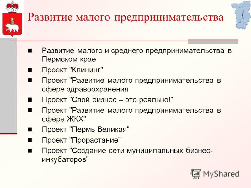 Развитие малого предпринимательства Развитие малого и среднего предпринимательства в Пермском крае Проект