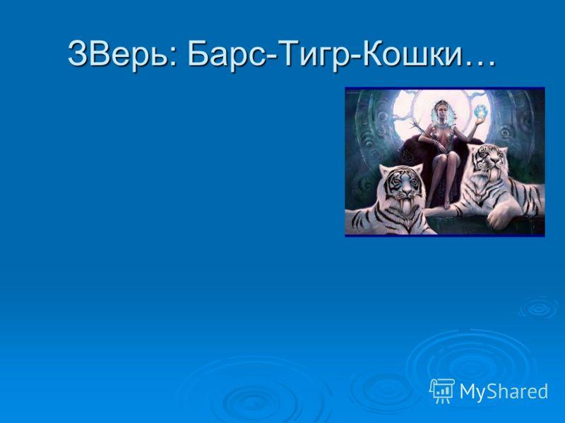 ЗВерь: Барс-Тигр-Кошки…