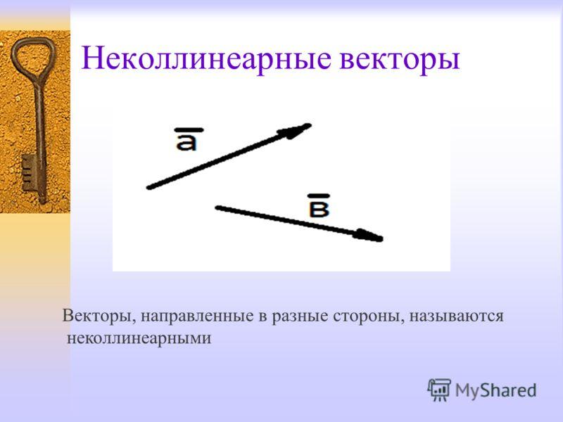 Неколлинеарные векторы Векторы, направленные в разные стороны, называются неколлинеарными
