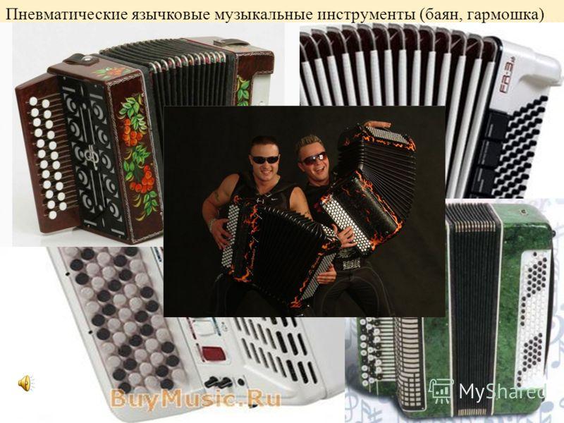 пневматические язычковые (баян, гармошка) Пневматические язычковые музыкальные инструменты (баян, гармошка)