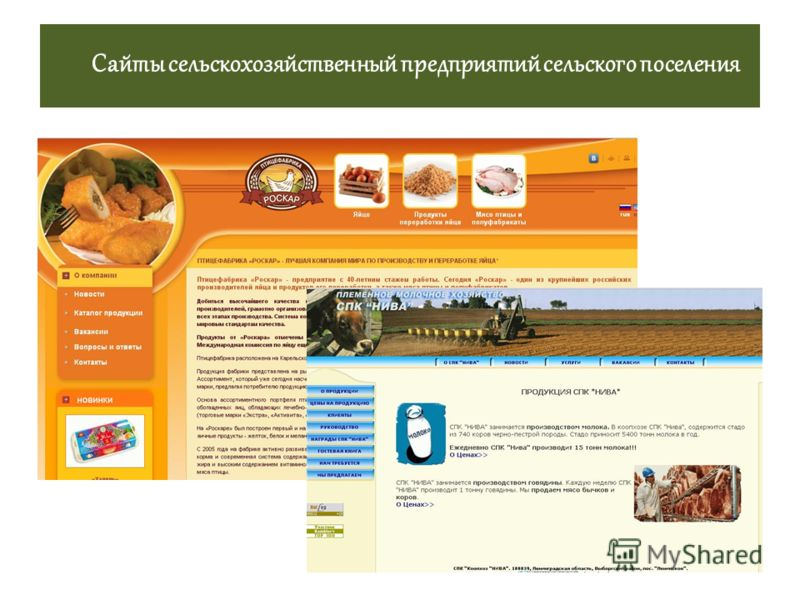 Сайты сельскохозяйственный предприятий сельского поселения