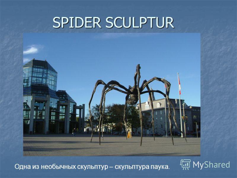 SPIDER SCULPTUR Одна из необычных скульптур – скульптура паука.
