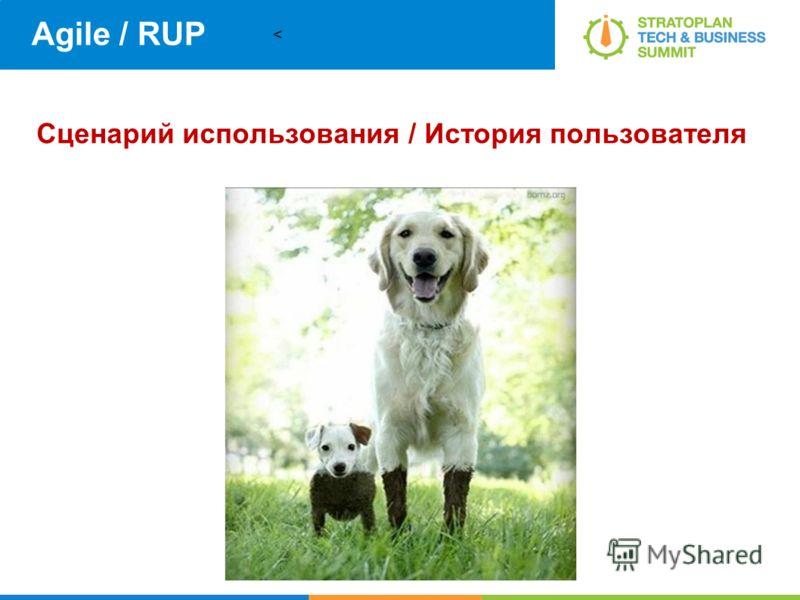 < Agile / RUP Сценарий использования / История пользователя