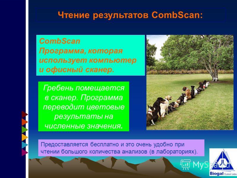Чтение результатов CombScan: CombScan Программа, которая использует компьютер и офисный сканер. Гребень помещается в сканер. Программа переводит цветовые результаты на численные значения. Предоставляется бесплатно и это очень удобно при чтении большо